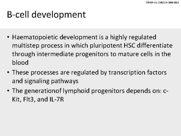 TÁMOP-4. 1. 2 -08/1/A-2009 -0011 B-cell development • Haematopoietic development is a highly regulated
