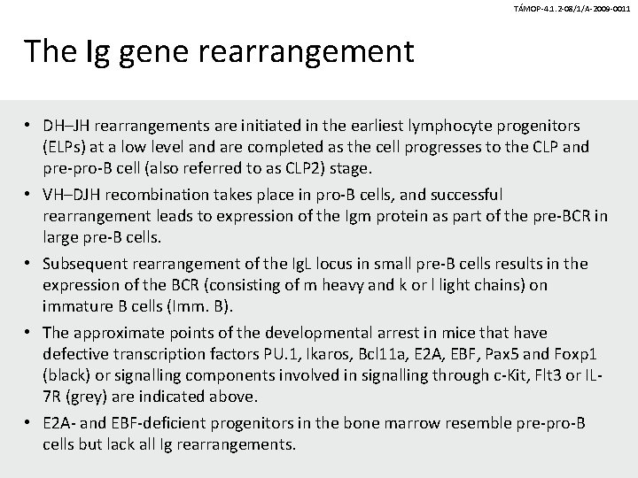 TÁMOP-4. 1. 2 -08/1/A-2009 -0011 The Ig gene rearrangement • DH–JH rearrangements are initiated