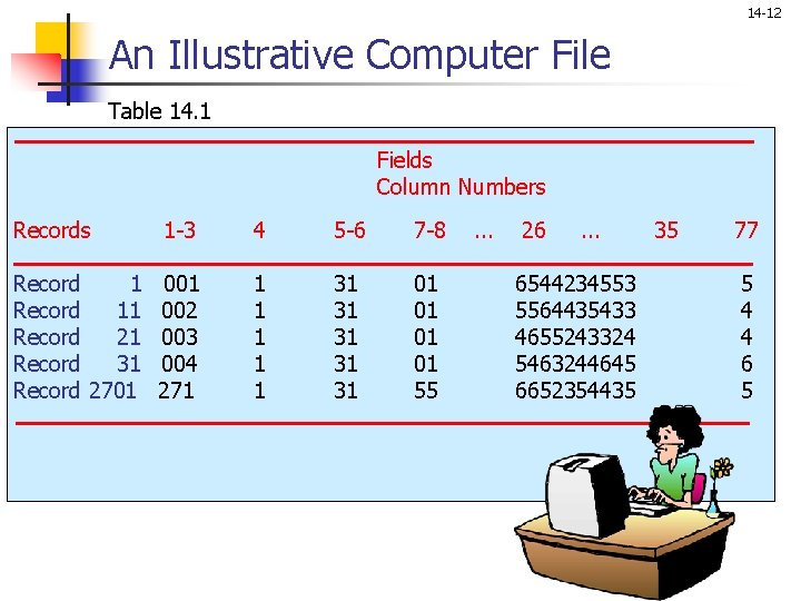 14 -12 An Illustrative Computer File Table 14. 1 Fields Column Numbers Records 1