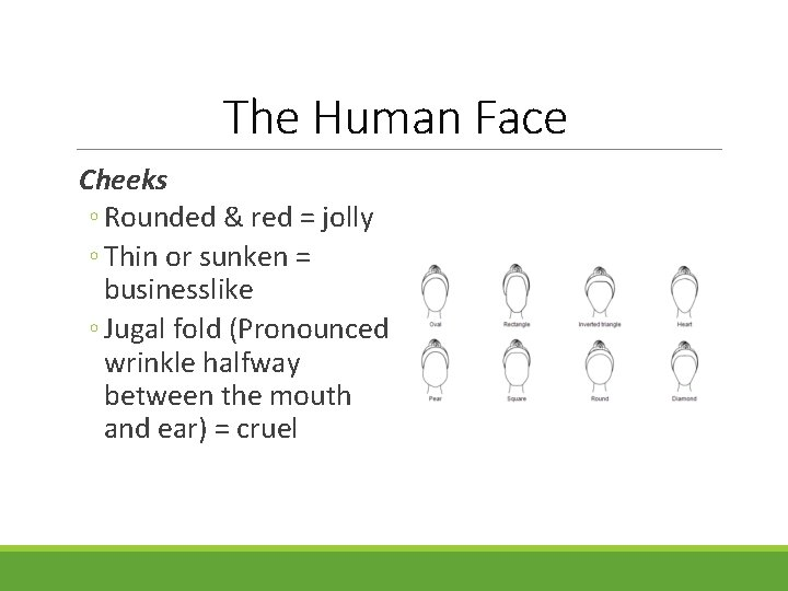 The Human Face Cheeks ◦ Rounded & red = jolly ◦ Thin or sunken