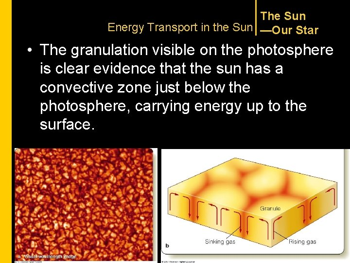 The Sun Energy Transport in the Sun —Our Star • The granulation visible on