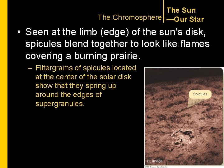 The Sun The Chromosphere —Our Star • Seen at the limb (edge) of the