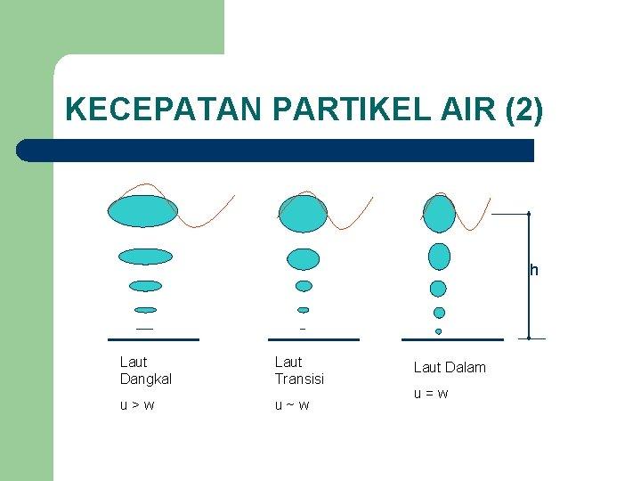 KECEPATAN PARTIKEL AIR (2) h Laut Dangkal Laut Transisi u>w u~w Laut Dalam u=w