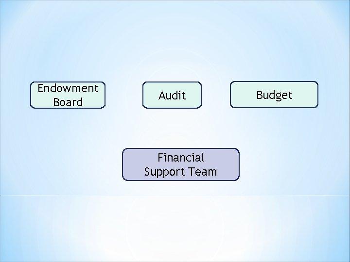Endowment Board Audit Financial Support Team Budget