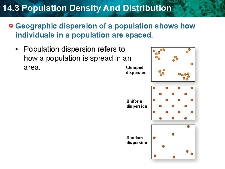 14. 3 Population Density And Distribution Geographic dispersion of a population shows how individuals
