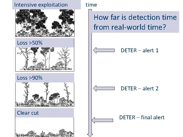 Exploração exploitation intensiva Intensive time How far is detection time from real-world time? Perda