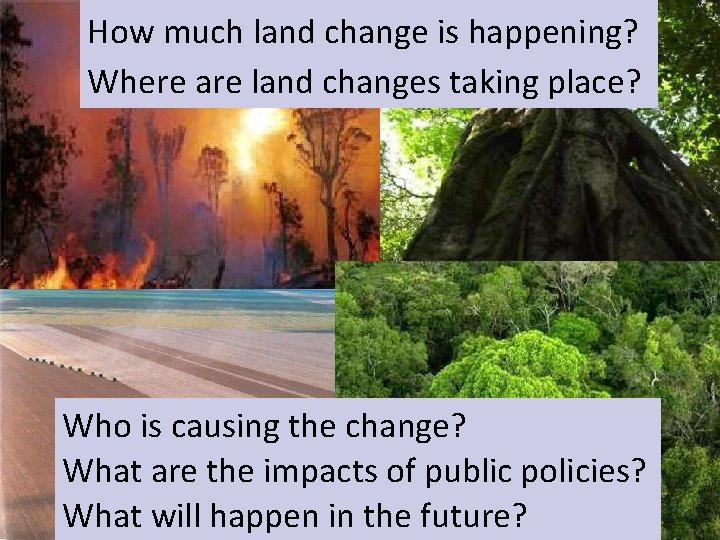 How much land change is happening? Global Change Where are land changes taking place?