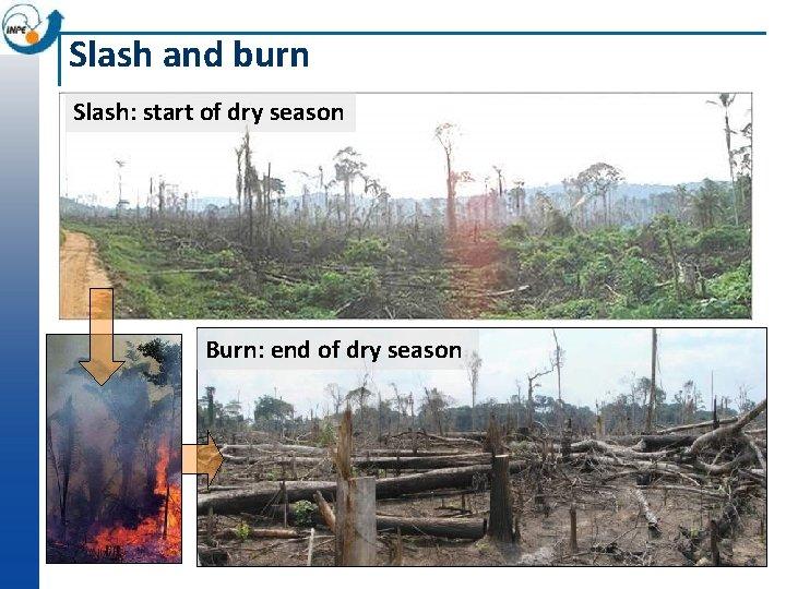 Slash and burn Slash: start of dry season Burn: end of dry season