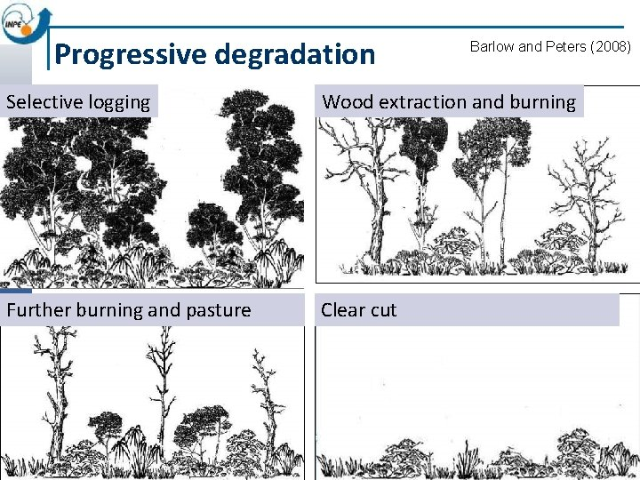 Progressive degradation Barlow and Peters (2008) Selective logging Wood extraction and burning Further burning