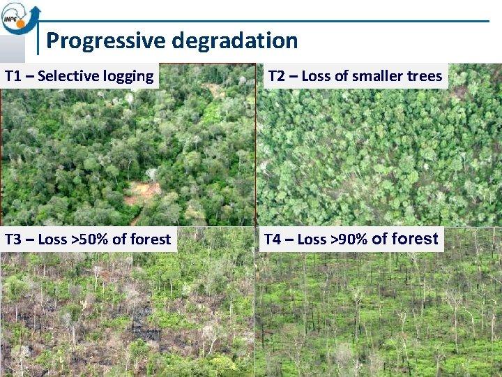 Progressive degradation T 1 – Selective logging T 2 – Loss of smaller trees