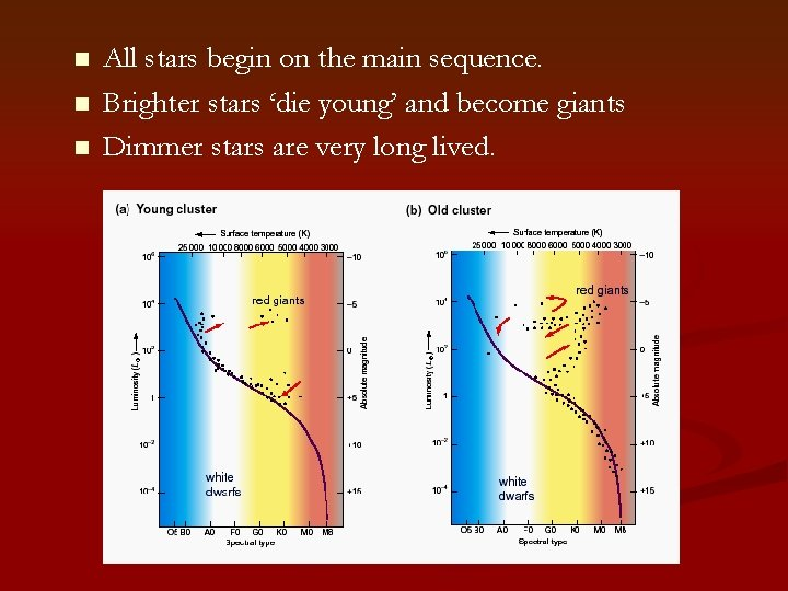 n n n All stars begin on the main sequence. Brighter stars 'die young'