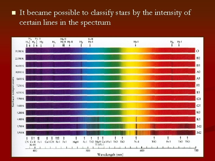 n It became possible to classify stars by the intensity of certain lines in