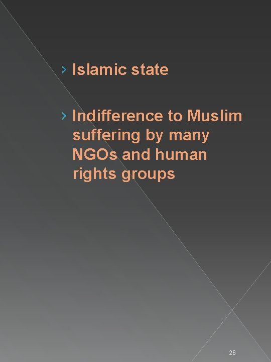 › Islamic state › Indifference to Muslim suffering by many NGOs and human rights