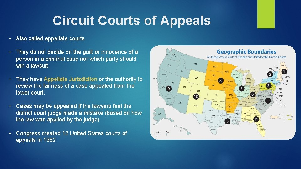 Circuit Courts of Appeals • Also called appellate courts • They do not decide