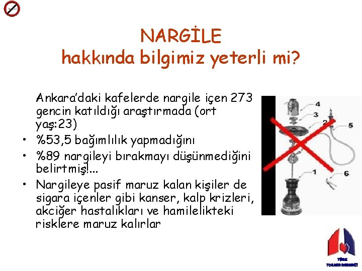 NARGİLE hakkında bilgimiz yeterli mi? Ankara'daki kafelerde nargile içen 273 gencin katıldığı araştırmada (ort