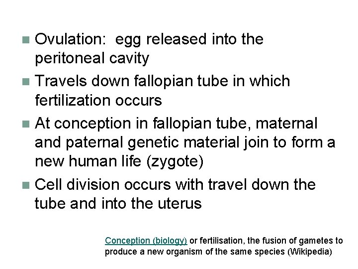Ovulation: egg released into the peritoneal cavity n Travels down fallopian tube in which