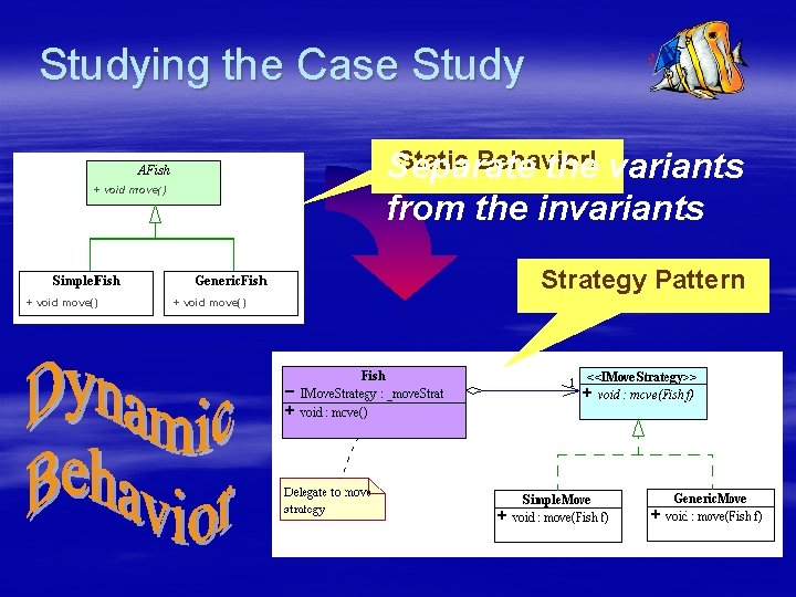 Studying the Case Study Static Behavior! Separate the variants from the invariants + void
