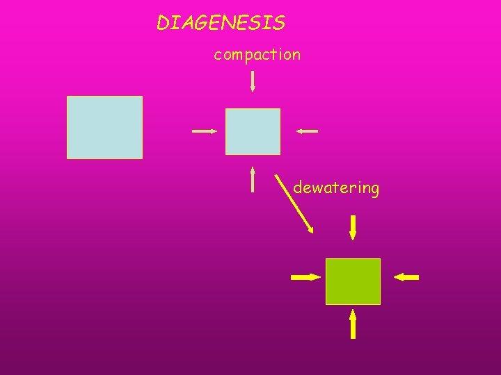 DIAGENESIS compaction dewatering