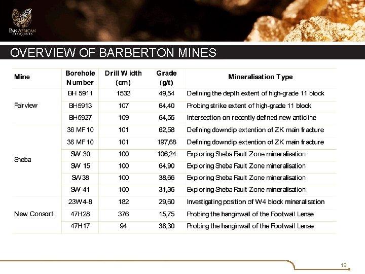 OVERVIEW OF BARBERTON MINES 19