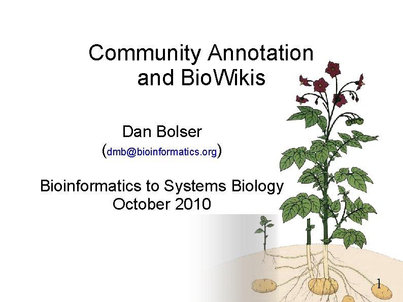 Community Annotation and Bio. Wikis Dan Bolser (dmb@bioinformatics. org) Bioinformatics to Systems Biology October