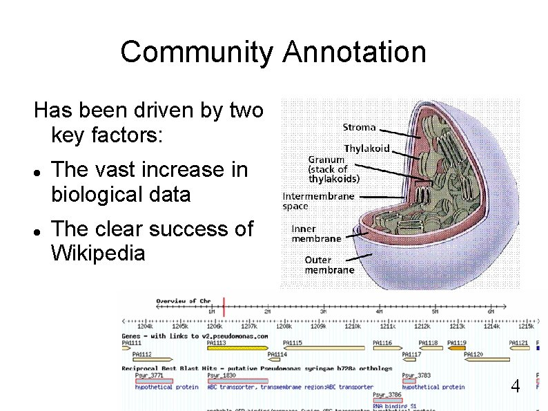 Community Annotation Has been driven by two key factors: The vast increase in biological