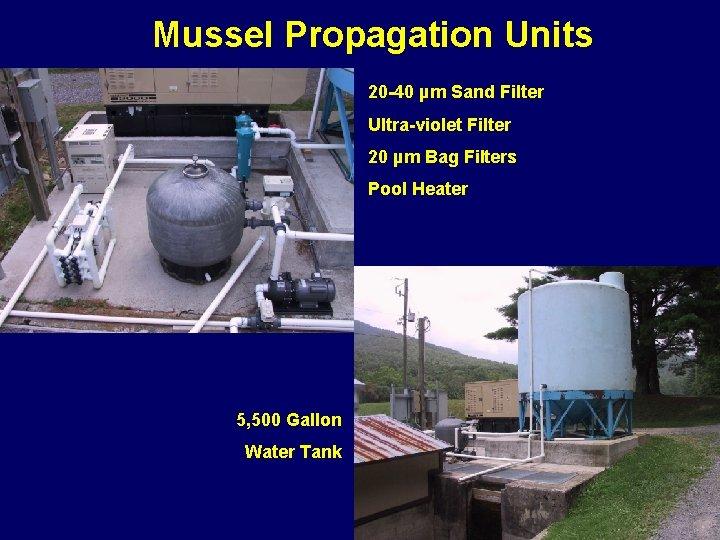Mussel Propagation Units 20 -40 µm Sand Filter Ultra-violet Filter 20 µm Bag Filters