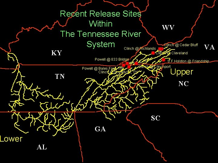 Lower Recent Release Sites Within WV The Tennessee River System Clinch @ Richlands Clinch