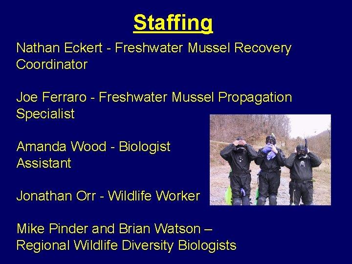 Staffing Nathan Eckert - Freshwater Mussel Recovery Coordinator Joe Ferraro - Freshwater Mussel Propagation