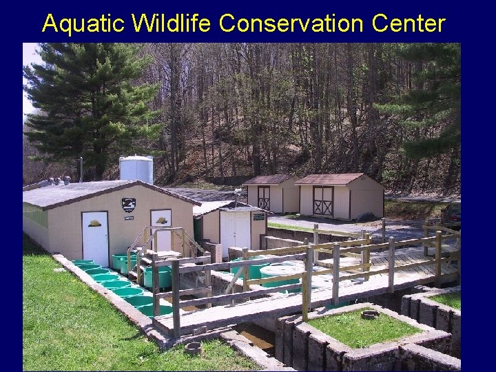 Aquatic Wildlife Conservation Center