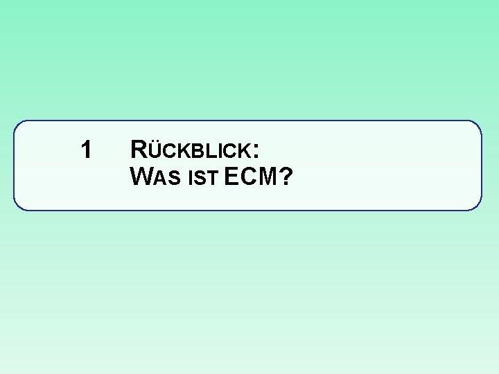 1 RÜCKBLICK: WAS IST ECM?