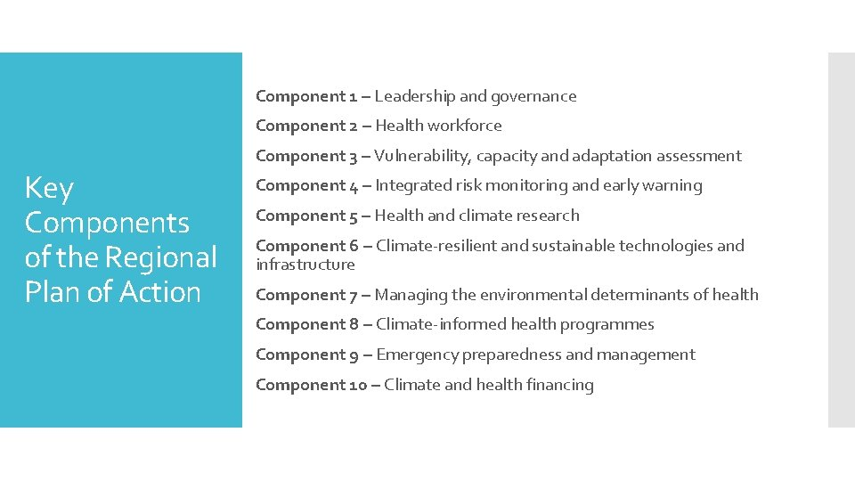 Component 1 – Leadership and governance Component 2 – Health workforce Component 3 –