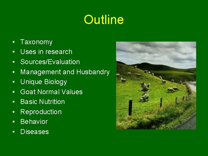 Outline • • • Taxonomy Uses in research Sources/Evaluation Management and Husbandry Unique Biology