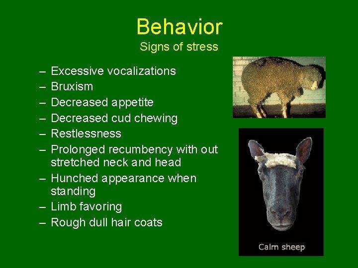 Behavior Signs of stress – – – Excessive vocalizations Bruxism Decreased appetite Decreased cud