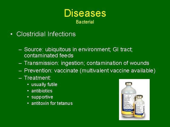 Diseases Bacterial • Clostridial Infections – Source: ubiquitous in environment; GI tract; contaminated feeds