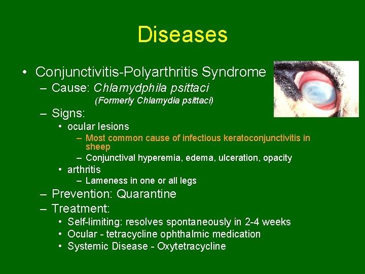 Diseases • Conjunctivitis-Polyarthritis Syndrome – Cause: Chlamydphila psittaci (Formerly Chlamydia psittaci) – Signs: •