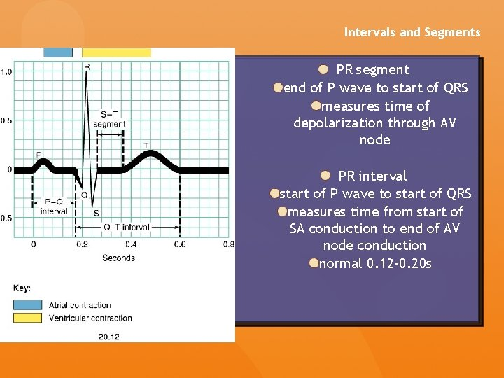 Intervals and Segments PR segment end of P wave to start of QRS measures