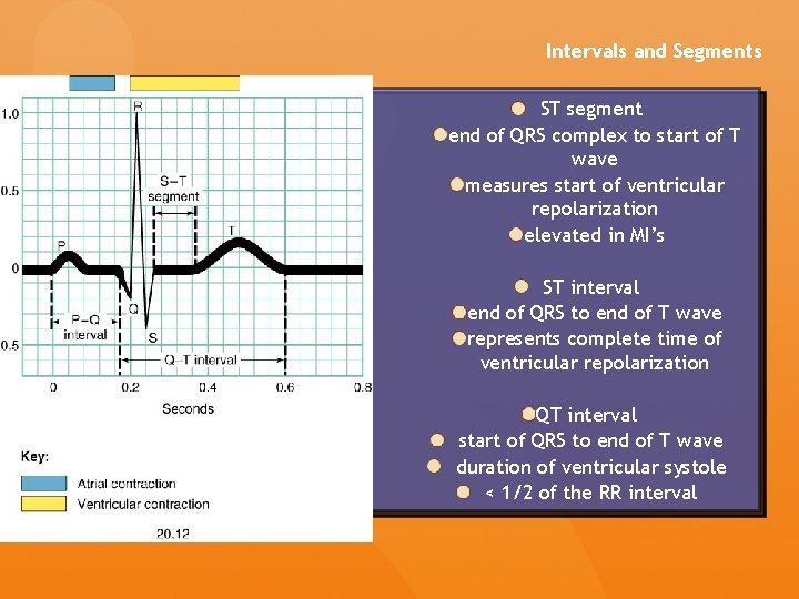 Intervals and Segments ST segment end of QRS complex to start of T wave