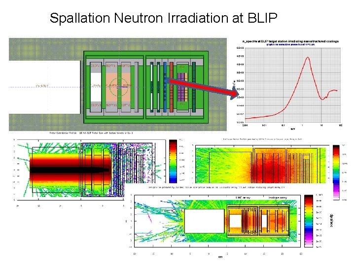 Spallation Neutron Irradiation at BLIP