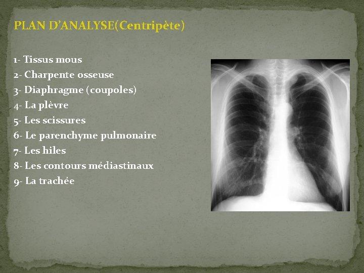 PLAN D'ANALYSE(Centripète) 1 - Tissus mous 2 - Charpente osseuse 3 - Diaphragme (coupoles)