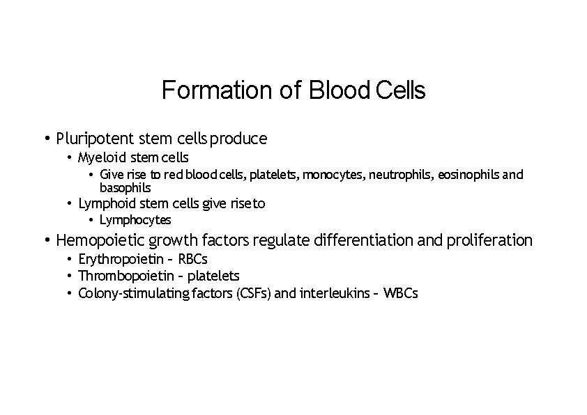 Formation of Blood Cells • Pluripotent stem cells produce • Myeloid stem cells •