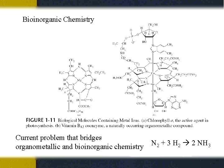 Bioinorganic Chemistry Current problem that bridges organometallic and bioinorganic chemistry N 2 + 3