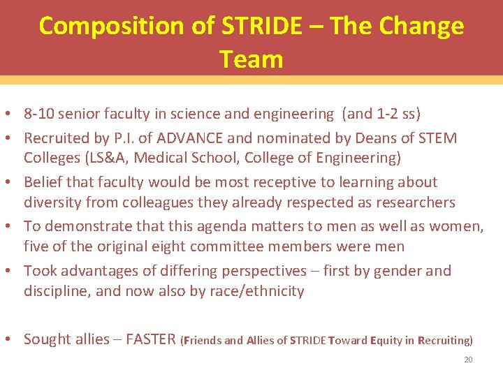 Composition of STRIDE – The Change Team • 8 -10 senior faculty in science