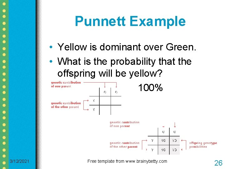 Punnett Example • Yellow is dominant over Green. • What is the probability that