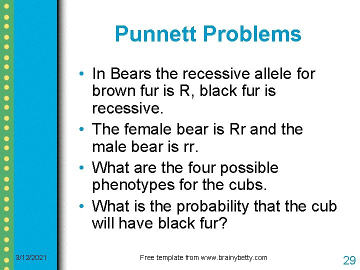 Punnett Problems • In Bears the recessive allele for brown fur is R, black