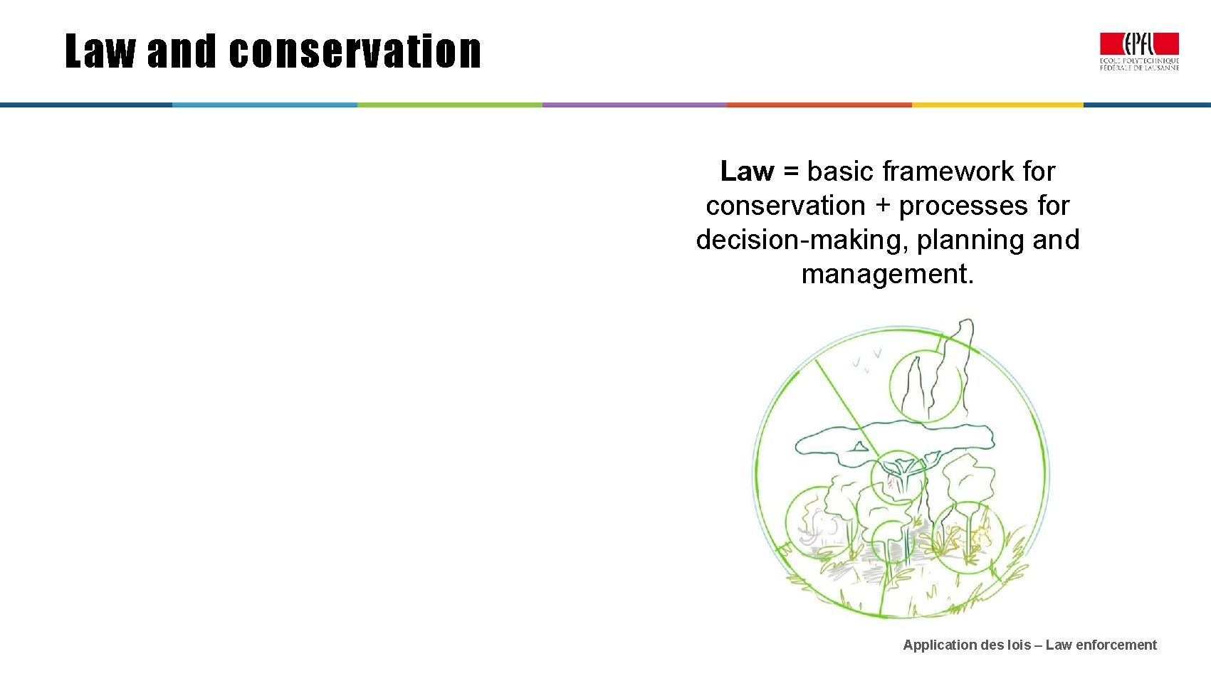 Law and conservation Law = basic framework for conservation + processes for decision-making, planning