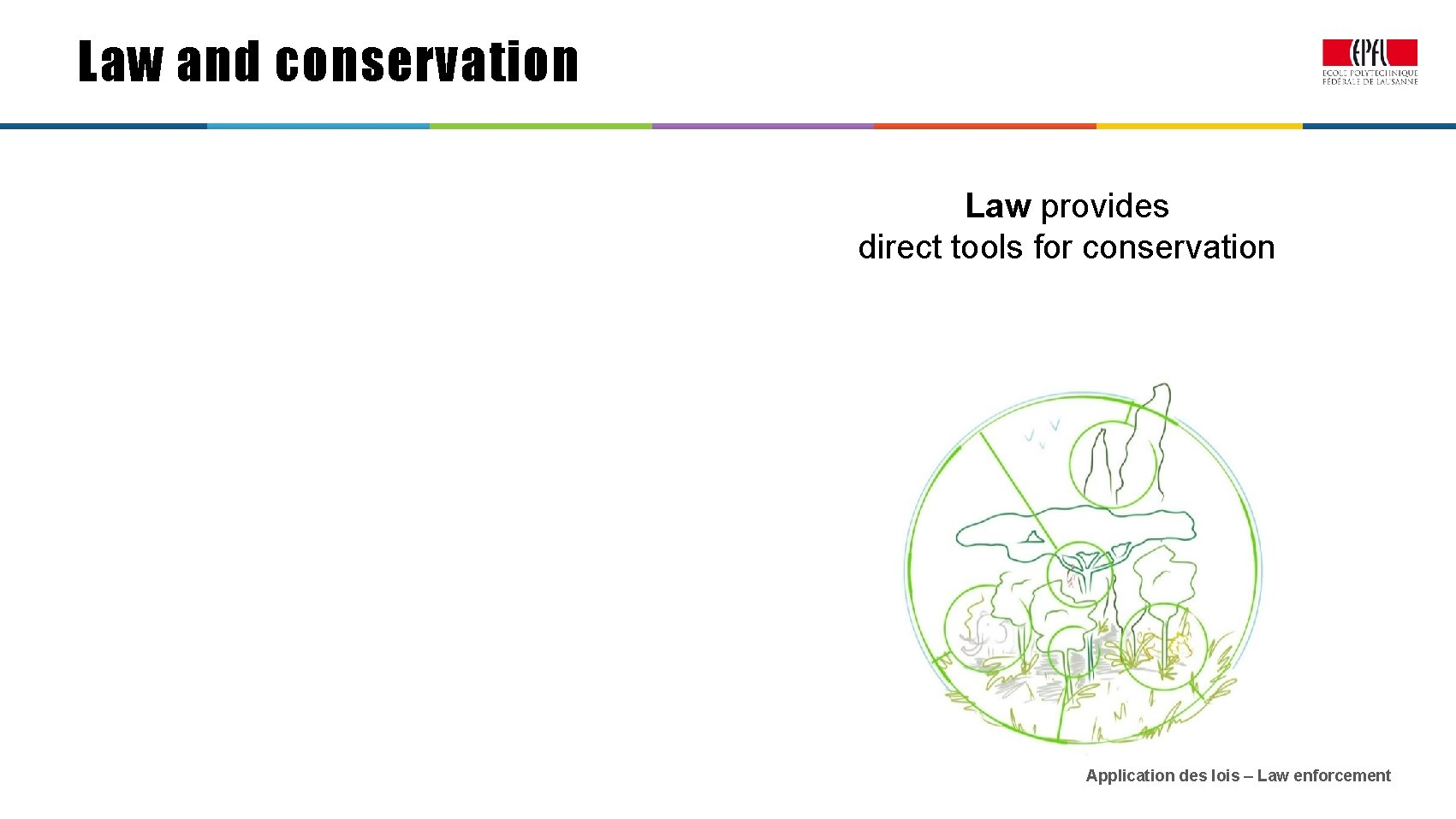 Law and conservation Law provides direct tools for conservation Application des lois – Law