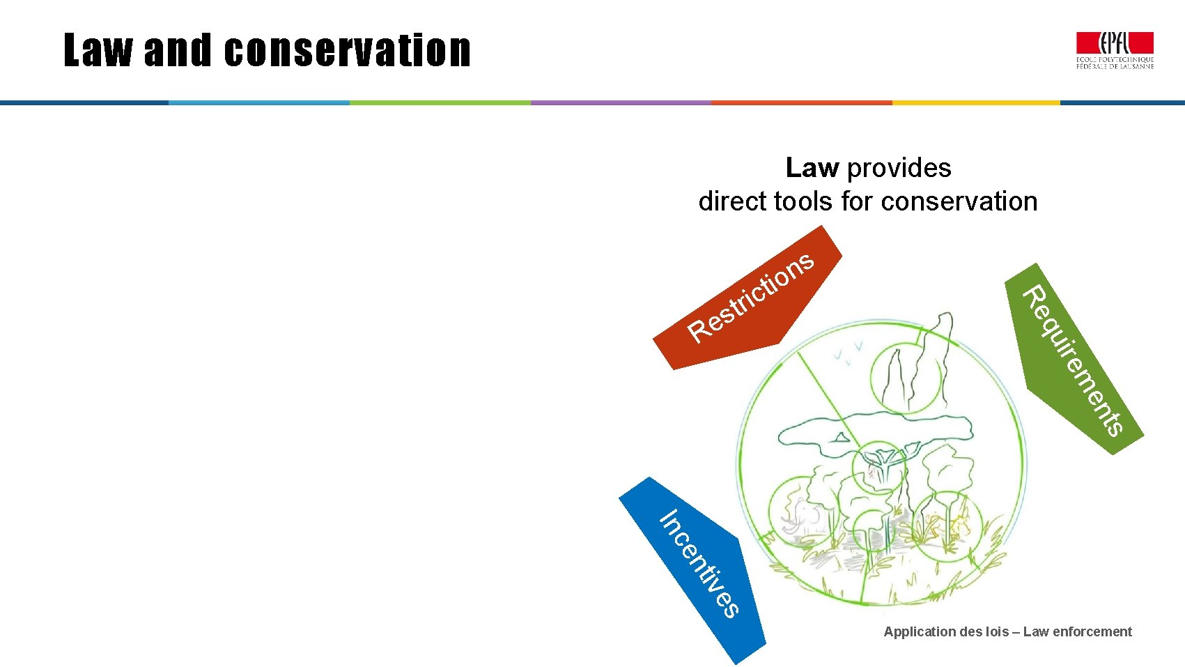 Law and conservation Law provides direct tools for conservation uir s e R t