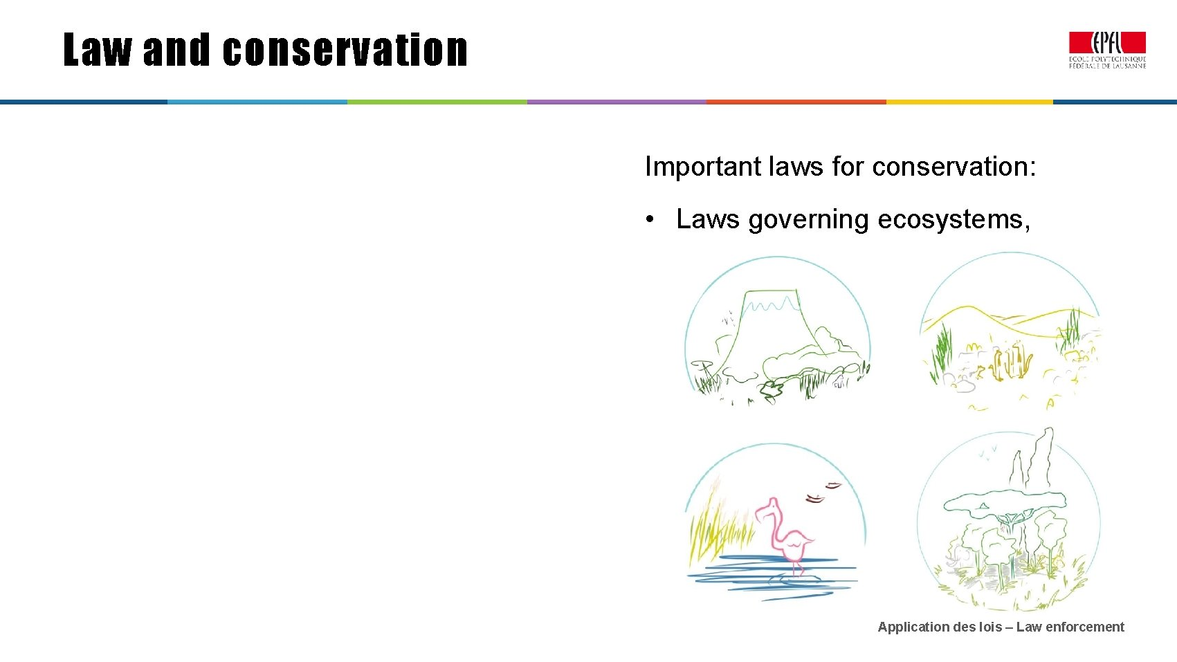 Law and conservation Important laws for conservation: • Laws governing ecosystems, Application des lois