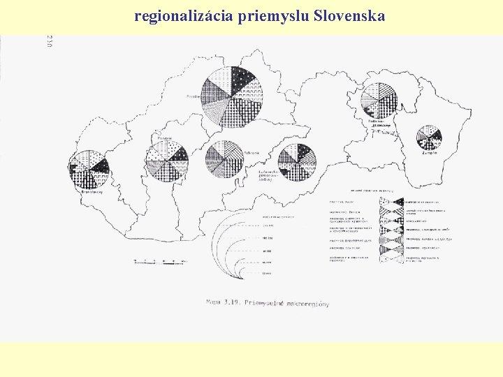 regionalizácia priemyslu Slovenska