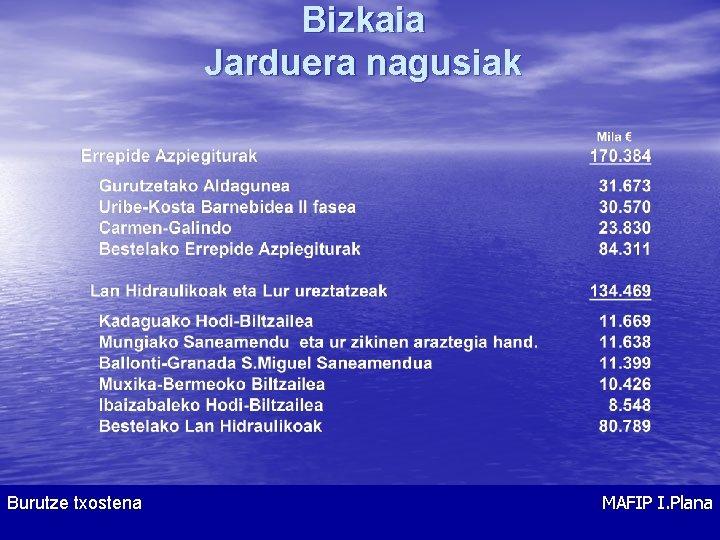 Bizkaia Jarduera nagusiak Burutze txostena MAFIP I. Plana